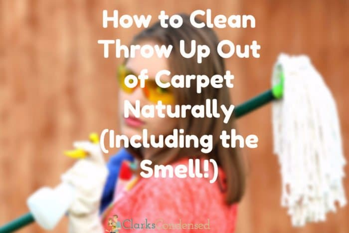 clean up vomit from carpet / clean vomit smell out of carpet / clean throw up out of carpet