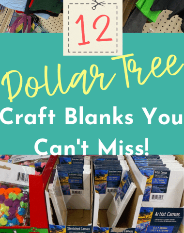 Craft Blanks You Can't miss pin