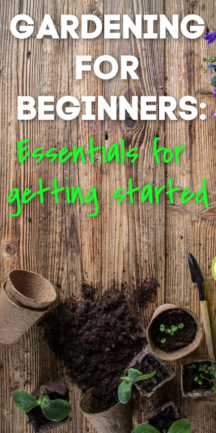 Gardening can be an amazing and relaxing hobby - but it can be hard to get started! Here are some of our best tips for gardening for beginners to get you off on the right foot. via @clarkscondensed