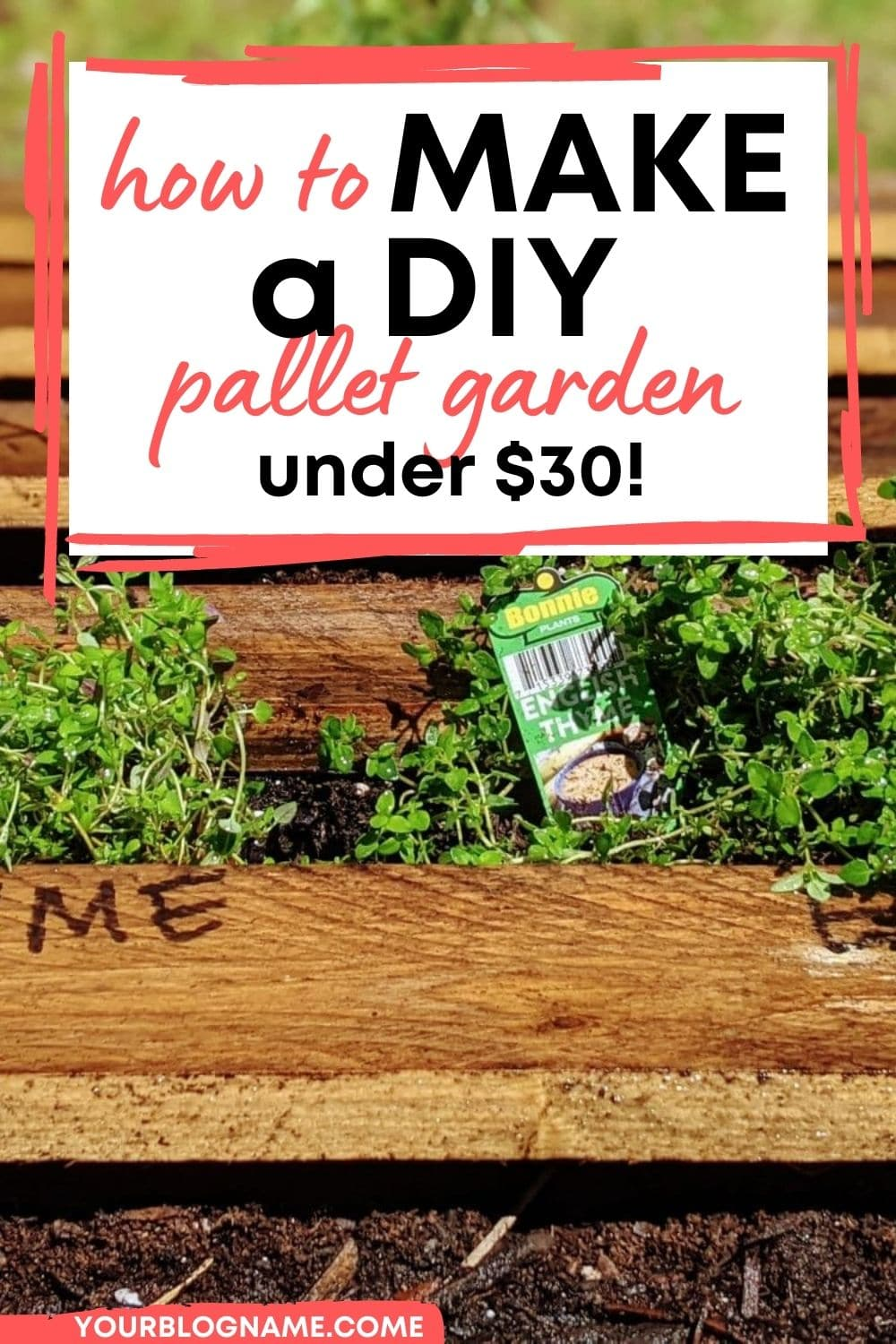 Wondering how to make your own outdoor pallet garden furniture? Looking for some DIY pallet garden ideas? Here's a beginner-friendly pallet garden furniture tutorial that will make you want to build your own pallet garden right away! This super easy tutorial will teach you how to build your own pallet garden project in just a few steps! This eco friendly DIY garden idea just costs less than $30 too! #diypalletfurniture #diygarden #palletproject #palletwood #backyardgarden #backyardgardening via @clarkscondensed