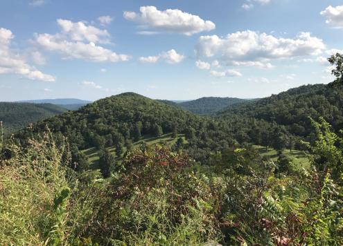 Mountain View Arkansas