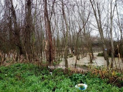 fiume volturno (2)