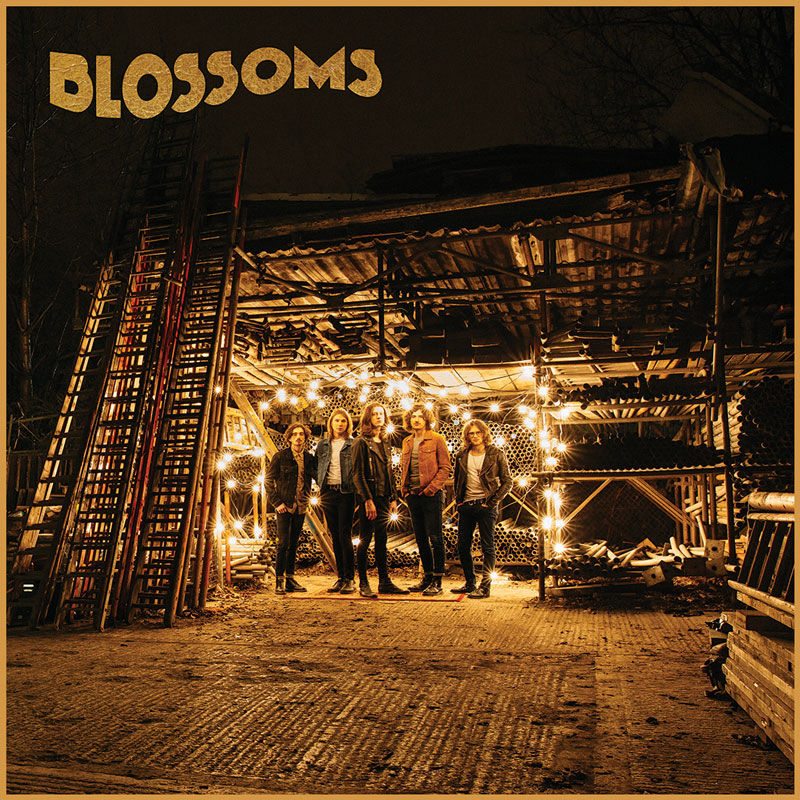 Image result for Blossoms - Blossoms
