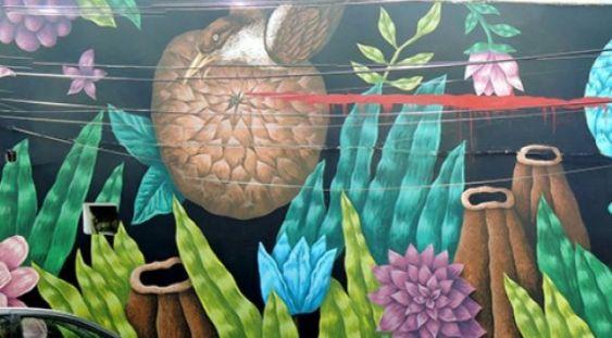 Artistul vizual Saddo va colora zidurile Universităţii de Arhitectură