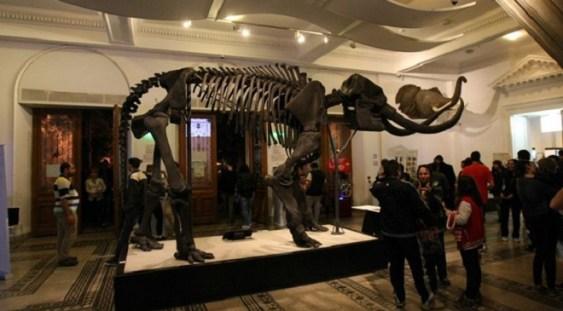 Noaptea Muzeelor 2017: Peste 13.000 de vizitatori au admirat expoziţiile Muzeului Municipiului Bucureşti