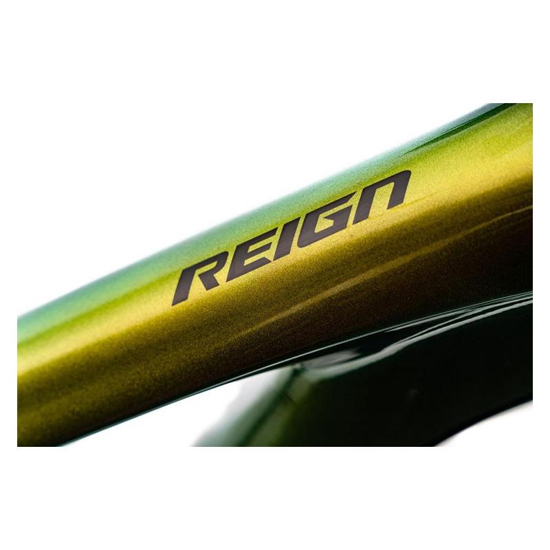2020-giant-reign-advanced-pro-0-29-mountain-bike2