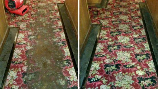 CCS_Carpet003