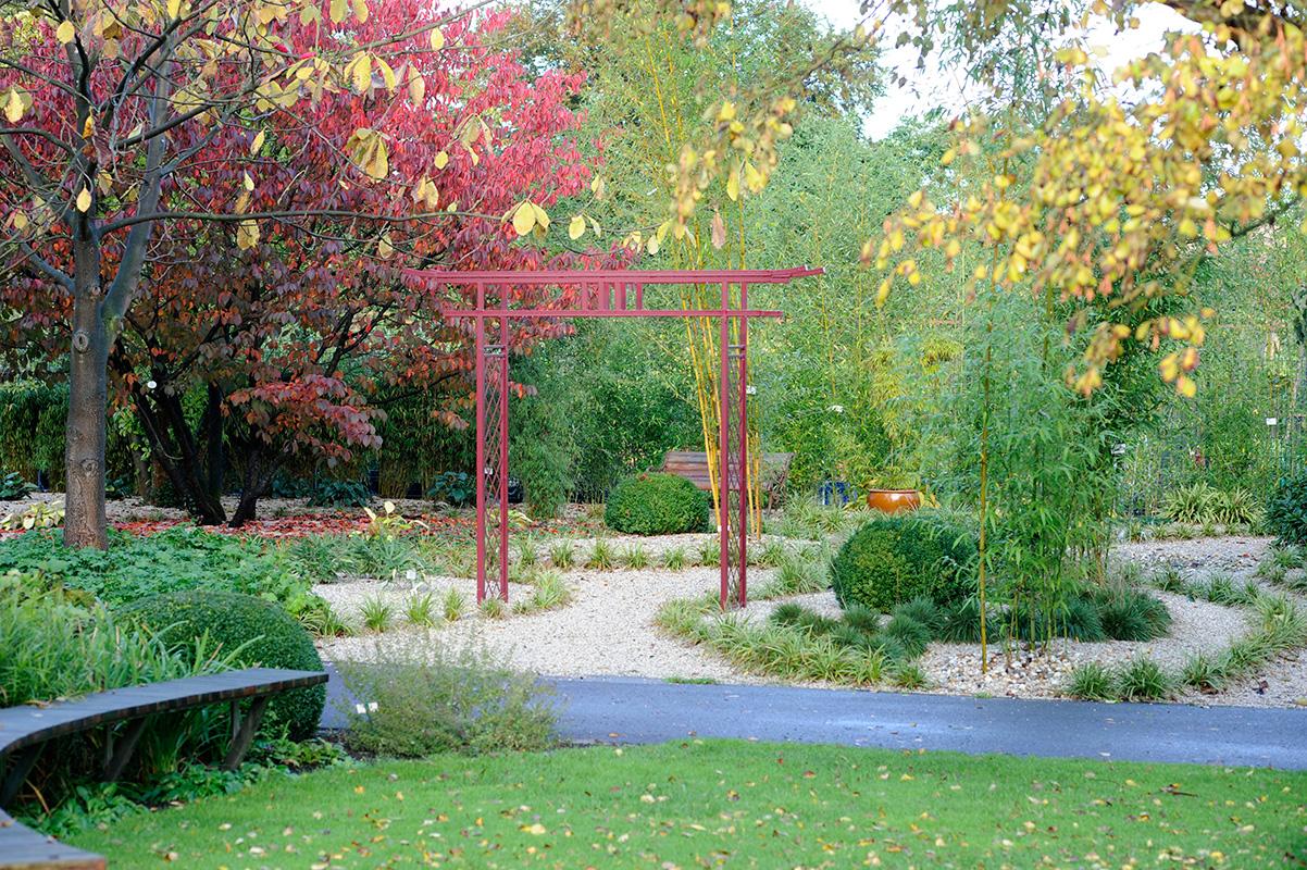 Garden Metal Arches