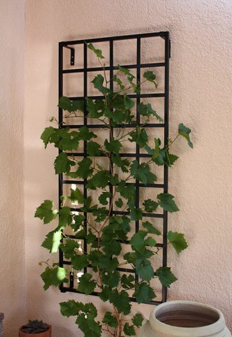 Wall Trellises Amp Treillages In Wrought Iron Quality