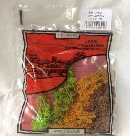 Autumn mix lichen