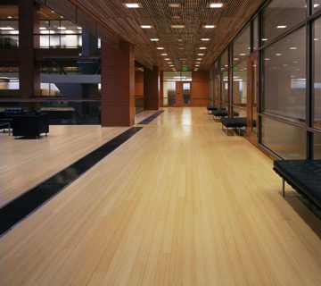 Commercial Floors Archives  Classic Floor Designs