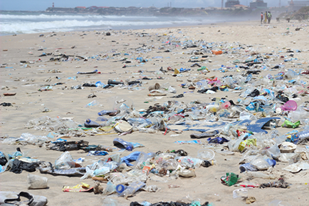 Rescue Our Decaying Beaches