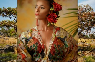 Editorial Three: Birds Of Paradise