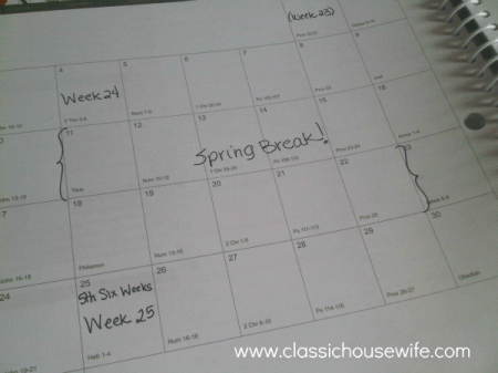 well-planned-day-spring-break