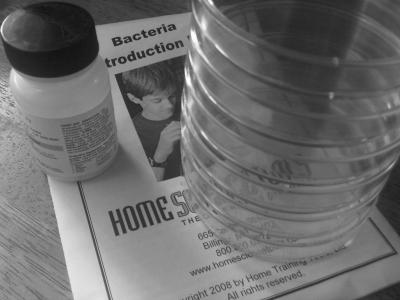 bacteria petri dish experiment