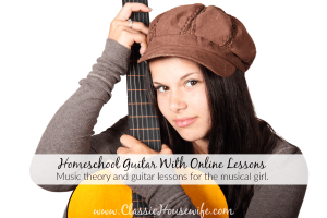 Homeschool Guitar Music Theory With Online Lessons