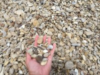 Gravel & River Rock - Classic Rock Stone Yard