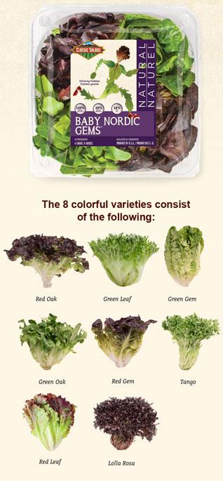 nordic blend classic salads