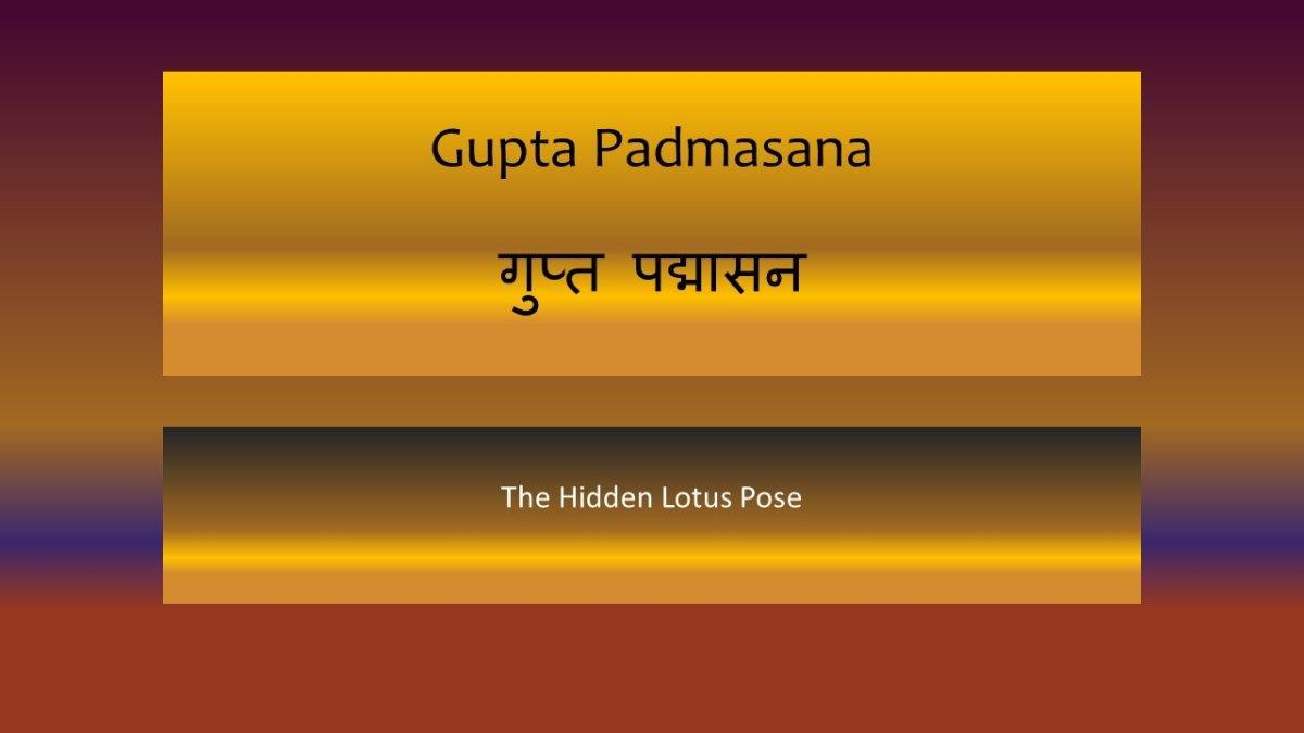 Gupta Padmasana