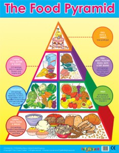 Food pyramid wall charts also healthy eating poster free delivery rh classroomcapers