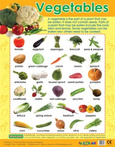 Wall charts vegetables healthy food educational poster free delivery also veg chart ganda fullring rh