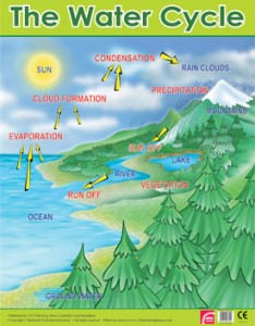 The water cycle learning chart school poster also educational posters reference for rh classroomcapers