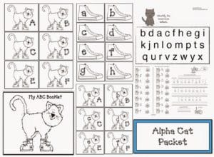 Back To School Puppy Packet With Fun Assessments
