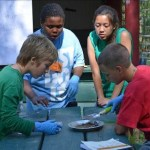"4-H youth explore the environment at the Sacramento 4-H ""On the Wild Side"" Environmental Education Camp"