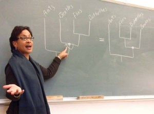 Lisa White (Assistant Director for Education and Public Programs at the University of California Museum of Paleontology) teaches about reading evolutionary trees.