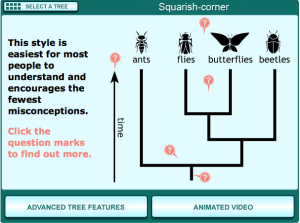 "The ""squarish-corner"" form of branching tree is easiest to interpret for students among the common forms of evolutionary tree graphics."