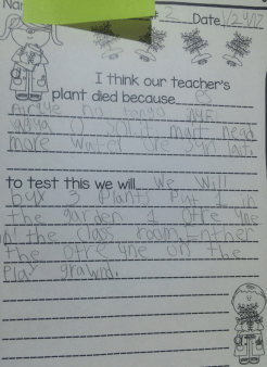 Students write out their current thoughts about the plant.