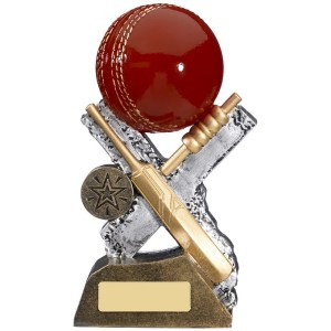 Engraved Cricket Trophies