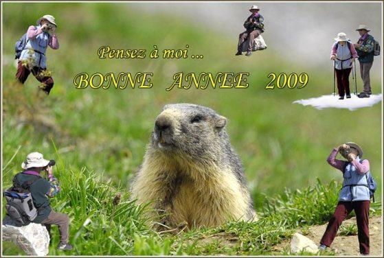 carte-voeux-2009-3