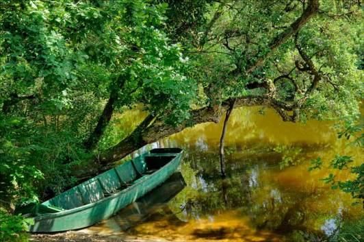 Barque sur le courant du Huchet