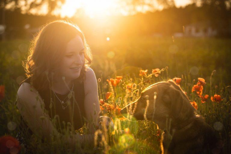 Hundeportraits bei Sonnenuntergang im Mohnfeld - Hundeshooting mit Frauchen von Claudia Link Fotografie und Grafikdesign, Fotograf zwischen Berching und Neumarkt in der Oberpfalz