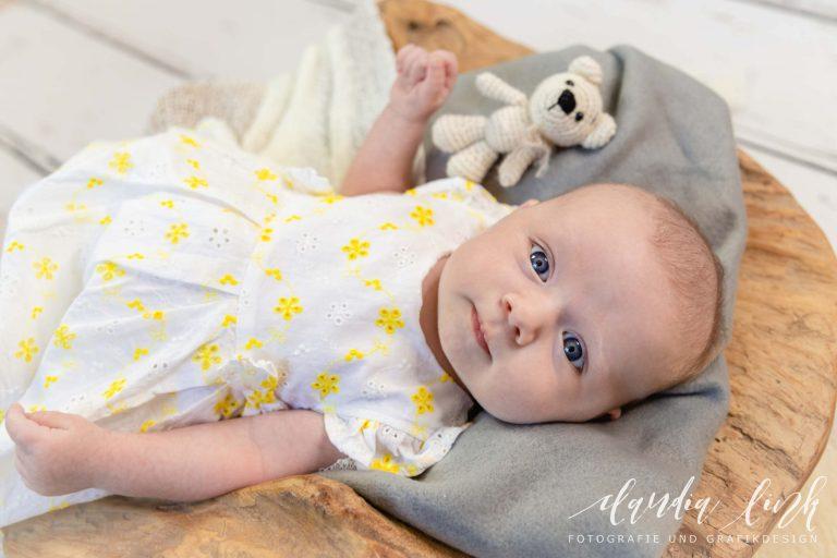 Babyfotos mit knuffigen Assistenten von Claudia Link Fotografie und Grafikdesign, Fotograf für Neugeborene, Babys, Kinder und Familien in Berching, Freystadt, Neumarkt in der Oberpfalz, Beilngries, Roth, Schwabach