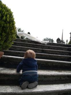 Lucas folgt dem weissen Pfau