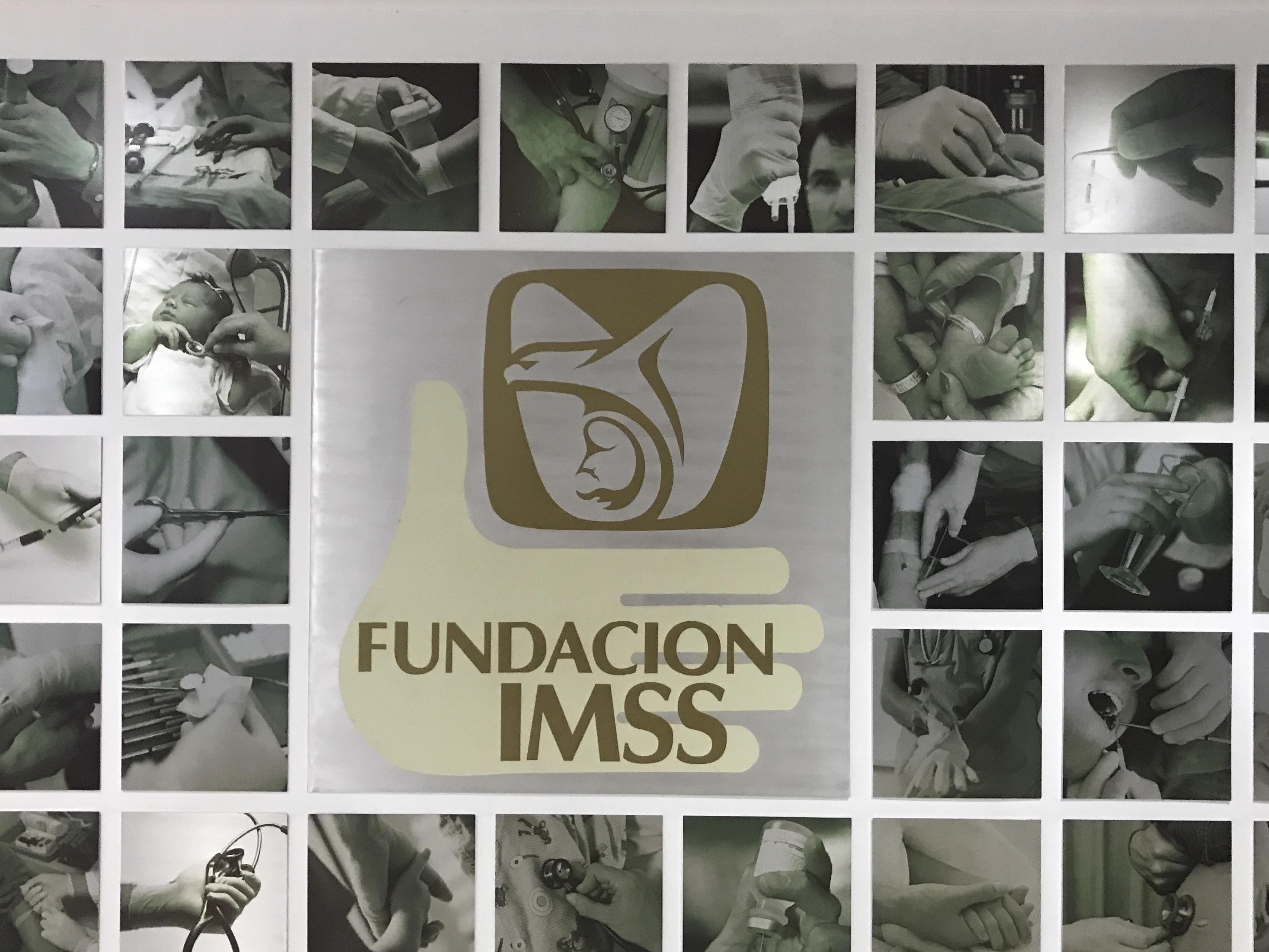 FUNDACION IMSS PROGRAMA SILLASCAMA 2017  Claudia