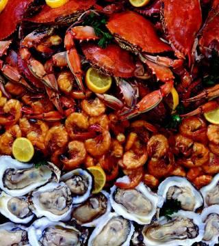 seafood_claudiamatarazzo