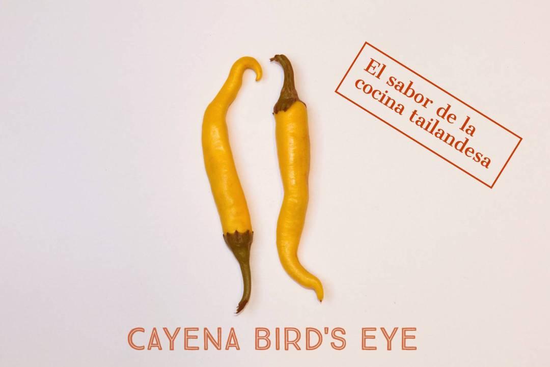 Panrotas-Picante-Cayena-Birds-Eye