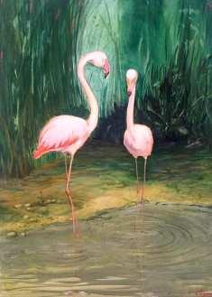 Pretty Flamingos (Paar Nr. 3). Öl auf Leinwand, 60 x 80 cm, 2019