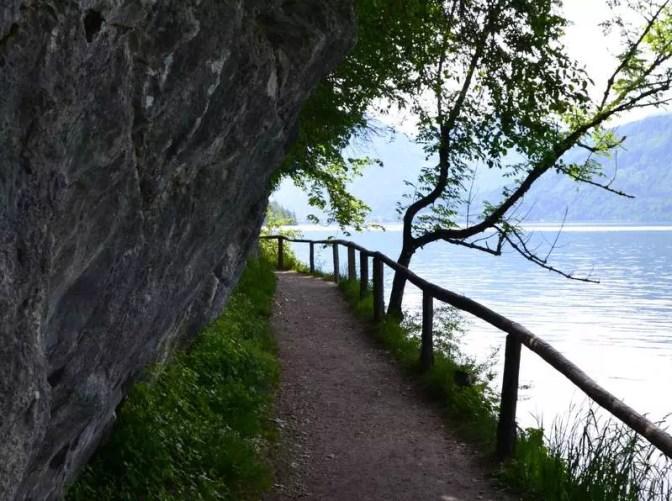 Wanderweg nach Fürberg am Wolfgangsee
