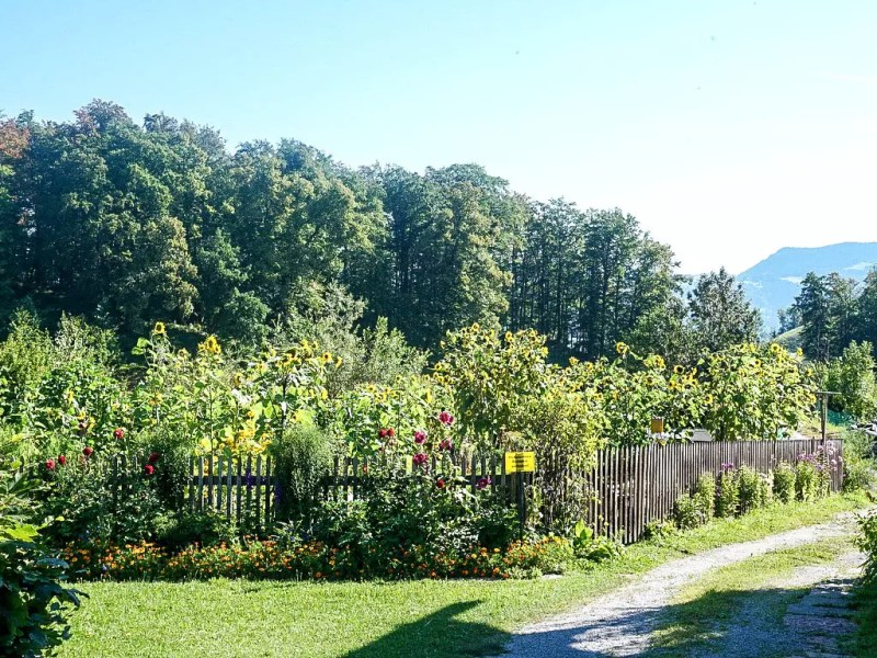 Bauerngarten in Bad Dürnberg