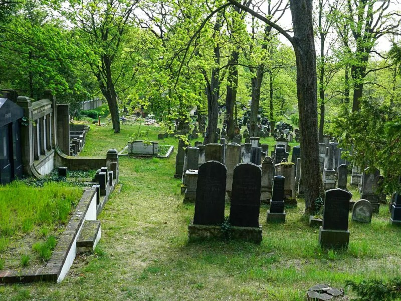jüdischer Friedhof Potsdam