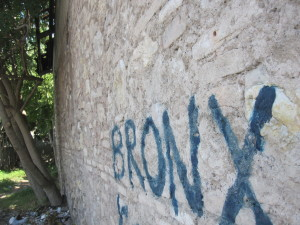 Terni Bronx