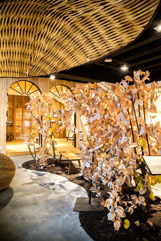 Museo del Cacao historia de un tesoro nacional  Clave