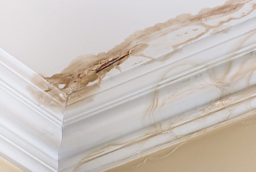 Calgary Roofing Company - Claw Roofing - Damaged leaky roof