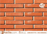 Home Front Tile Design in Lahore Pakistan  Pak Clay Floor ...