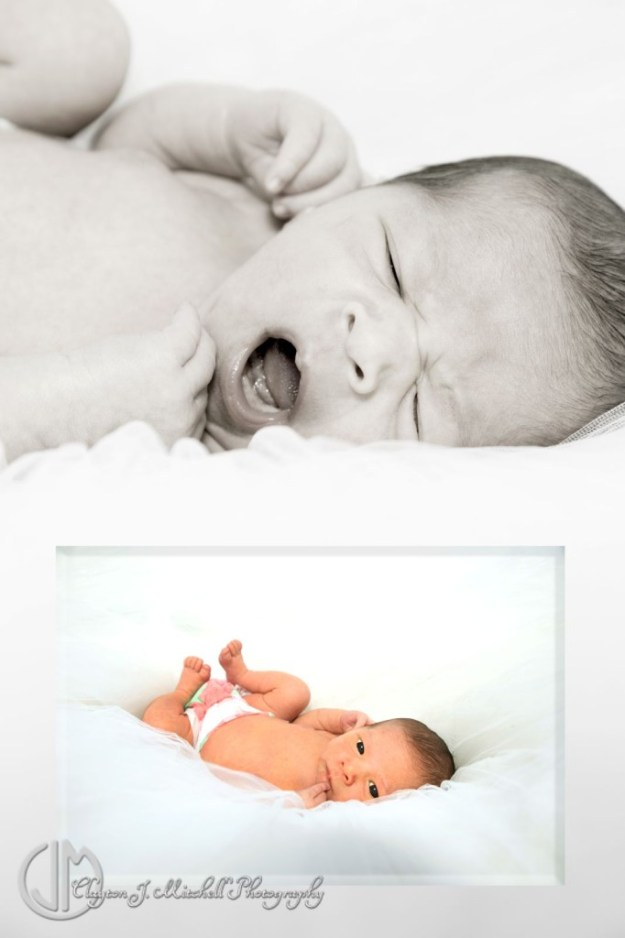 beautiful newborn photography Berkeley CA