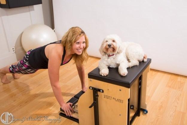 dog at pilates studio
